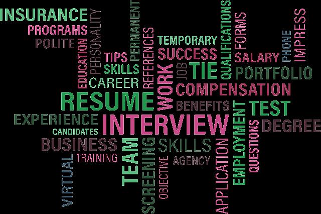viflow-human-resources